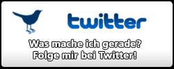 Twitter Button (PNG) Nummer 4 - groß mit Vogel, Text: Was mache ich gerade? Folge mir bei Twitter! - 250px